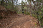 Mountain Biker on Vista Trail