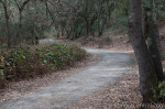 South Creekside Trail