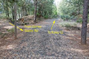 Sugar Pine Railroad Grade