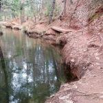 Main Tuolumne Ditch Trail