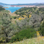 Looking Northwest at New Melones Lake