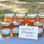 Apricot / Pineapple Jam