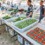 Fresh, Local Vegetables