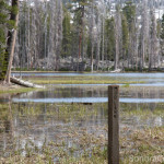 Mud Lake Sign Post