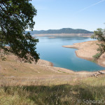 New Melones Lake From Carson Creek Trail