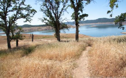 Carson Creek Trail