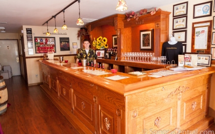 Gianelli Vineyards Tasting Bar