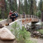 Bridge at Crabtree Camp Trailhead