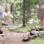 Emigrant Wilderness Sign