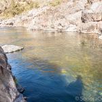 Camp Nine Swimming Hole