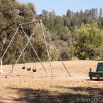 Willow Springs Park Swings