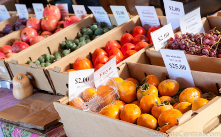 Fresh, Local Produce