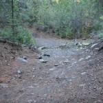 Creek Crossing Along Sugar Pine Railroad Grade