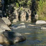 Middle Fork Stanislaus below footbridge