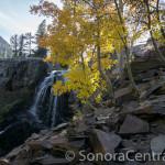 Lower Sardine Falls