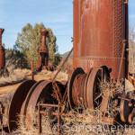 Steam Donkey at Westside